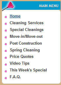 Cleaning Categories
